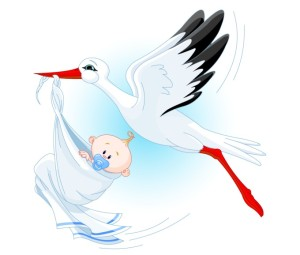 stork-with-baby-vector